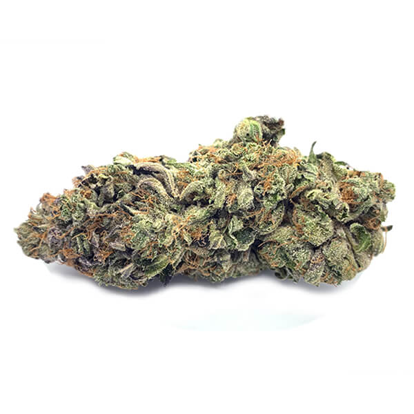 El Jefe Weed   My Pure Canna   Online Dispensary Canada