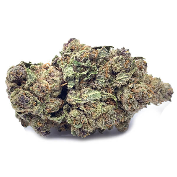 Purple Punch Weed   My Pure Canna   Online Dispensary Canada
