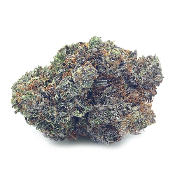 Buy rock tuna Weed Online   My Pure Canna   Online Dispensary Canada