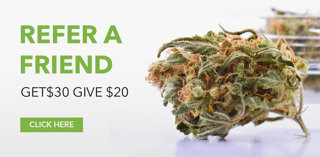 order medical cannabis online | My Pure Canna