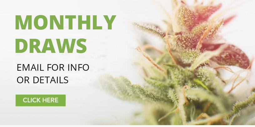 buy cannabis online Canada | online dispensary