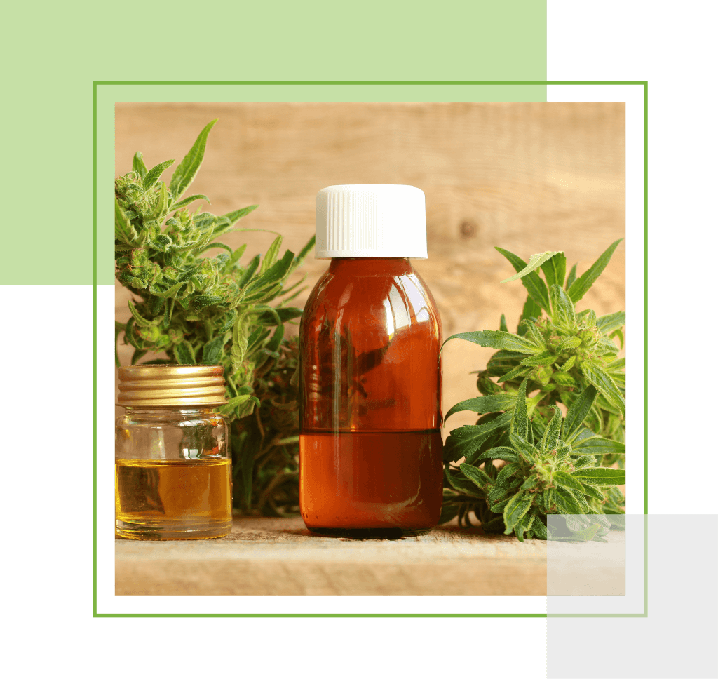 buy cbd oil online in Canada | My Pure Cannabis