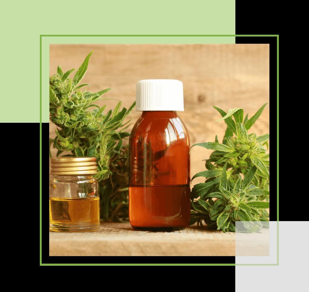 buy cbd oil online in Canada | My Pure Cannabis