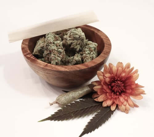 Best Cannabis Strains That Could Help Treat Insomnia