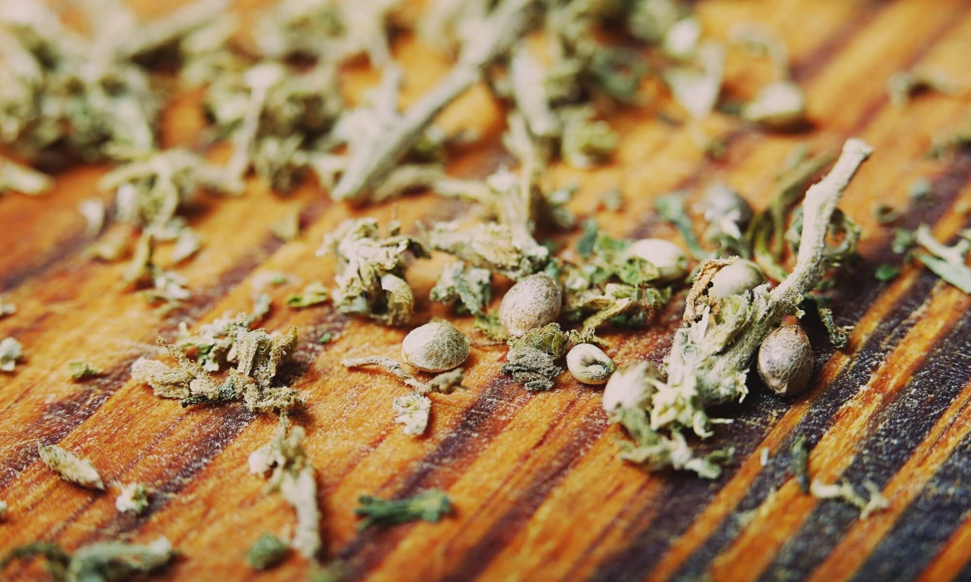 Where To Buy Weed Seed?