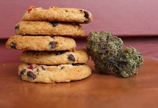 buy edibles online canada | My Pure Canna